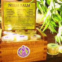 Neem Balm Picture 01
